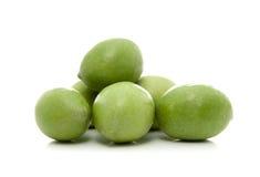 zielone oliwki Zdjęcia Stock