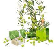 Zielone oliwki dla zdroju Obrazy Royalty Free