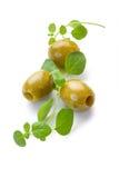 Zielone oliwki i świeży oregano na białym tle Zdjęcia Royalty Free