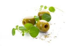 Zielone oliwki i świeży oregano na białym tle Fotografia Stock