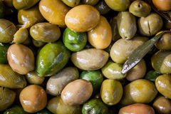 Zielone oliwki w oleju Fotografia Stock