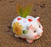 zielone oszczędności Obraz Stock