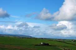 zielone pastwiska Zdjęcie Stock