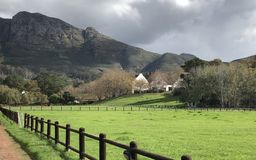zielone pastwiska Fotografia Royalty Free