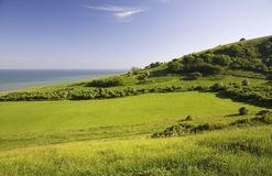zielone pola morza obrazy stock