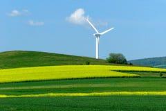 zielone pola, turbiny wiatru żółty Zdjęcie Stock