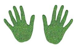 zielone ręki zdjęcie stock