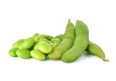 zielone soje Fotografia Stock