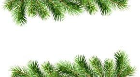 Zielone sosen gałązki dla Bożenarodzeniowych granic Obrazy Stock