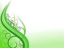 zielone tło rośliny Fotografia Stock