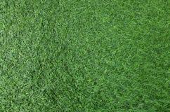zielone trawy konsystencja Zdjęcia Stock