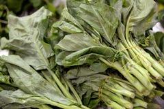 zielone warzywa Obrazy Royalty Free