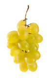 zielone wina winogrona Zdjęcie Stock
