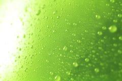 Zielone wod krople Zdjęcie Royalty Free
