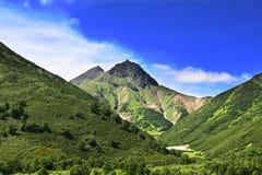 zielone wzgórza Obraz Royalty Free