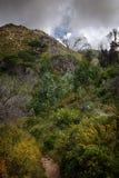 zielone wzgórza Obraz Stock
