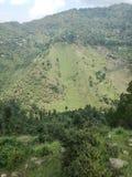 zielone wzgórza fotografia royalty free