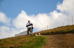 zielone wzgórza charakteru wypoczynek w chodzącym zdjęcia royalty free