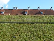 Zielonego budynku dachu Naturalnego Starego budynku Odgórny Ryski w Latvia 2014 Fotografia Royalty Free