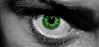 Zielonego Colour oko Obraz Stock
