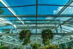 Zielonego domu dach Zdjęcie Royalty Free