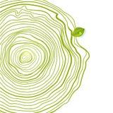 Zielonego eco rysunku życzliwi okręgi z liściem Obrazy Stock