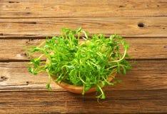 Zielonego grochu krótkopędy Zdjęcie Stock