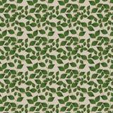 Zielonego i Złocistego liścia wzór Obraz Stock