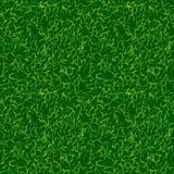 Zielonego koloru trawy wektoru tło Świeża wiosna gazonu wektoru ilustracja Naturalnego środowiska tło piłka nożna Fotografia Royalty Free