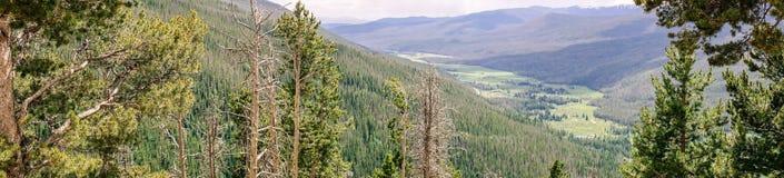 Zielonego lata halna dolina, Skalistej góry park narodowy Kolorado, Stany Zjednoczone Obraz Royalty Free