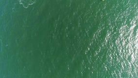 Zielonego morza powierzchnia, odgórny widok zdjęcie wideo