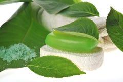 zielonego mydła gąbka Obraz Royalty Free