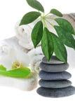 zielonego mydła ręcznik Zdjęcie Stock
