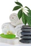 zielonego mydła ręcznik Obraz Stock