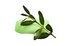 zielonego mydła wiosna Obraz Royalty Free