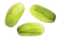Zielonego ogórka odosobniony tło Zdjęcia Stock
