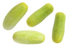 Zielonego ogórka odosobniony tło Zdjęcia Royalty Free