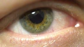 Zielonego oka ekstremum w górę irysa i ucznia dilating i skraca Bardzo znakomicie szczegółowy makro- mruganie zdjęcie wideo