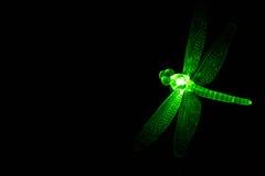Zielonego szkła ornamentu Dragonfly Jarzy się przy nocą Fotografia Royalty Free