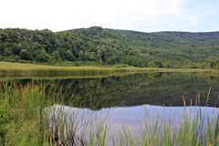 Zielonego wzgórza i jeziora panoramy widok zdjęcie stock