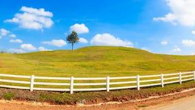 Zielonego wzgórza lata krajobrazu panorama Zdjęcia Stock