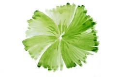 Zielonej akwareli abstrakcjonistyczny handmade okrąg Zdjęcia Royalty Free