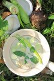 Zielonej curry proporci Tajlandzki jedzenie zdjęcie stock