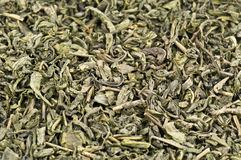 Herbaciana tekstura Obraz Royalty Free