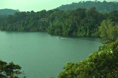 Zielonej natury fotografii Jeziorny wonderworl zdjęcia royalty free