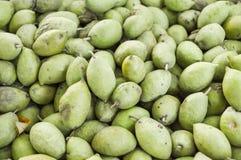 Zielonej oliwki owoc Zdjęcie Stock