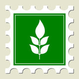 zielonej rośliny znaka znaczek Zdjęcia Stock