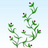 Zielonej rośliny ornament Obrazy Stock