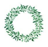Zielonej rośliny wianek Zdjęcie Royalty Free