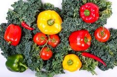 Zielonej sałatki liście i warzywa, Zdrowy stylu życia pojęcie Obraz Royalty Free